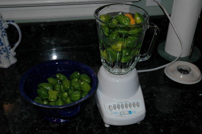 sbattitore elettrico per olive alternative